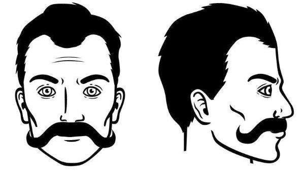 bigote-carnicero