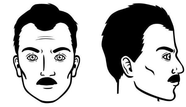 bigote-de-lamara