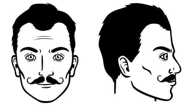 bigote-de-manubrio