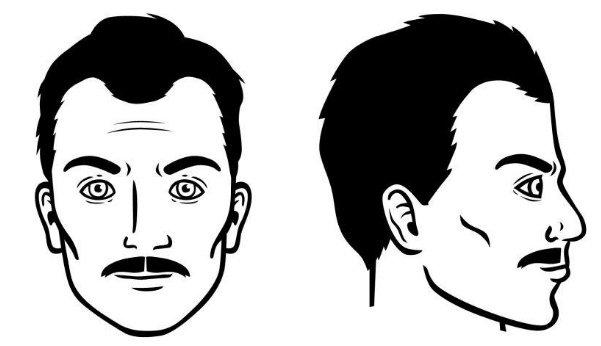 bigote-normal