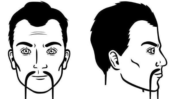 bigote-chino
